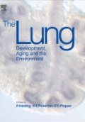 The Lung Development , Agign and the Environment